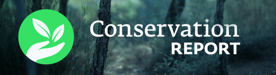 Conservation Report